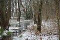 Winter in Selfkant.jpg