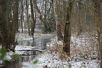 Selfkant - Winter landscape, Tueddern, Selfkant, Germany.