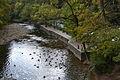 Wissahickon Creek (8080489102) (2).jpg