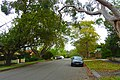 Woodside Avenue, Lindfield, New South Wales (2011-04-02).jpg