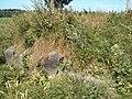 Woynillowicz family hill in Sawiczy - gravestone 3.jpg
