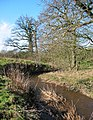 Wych Brook, near Wolvesacre Mill - geograph.org.uk - 336753.jpg
