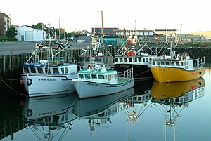 Cape Islander - Cape Islanders in Halifax, Nova Scotia.