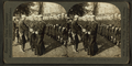 'Parade Rest' - Naval training station, from Robert N. Dennis collection of stereoscopic views.png