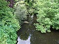 's-Gravenhofbrug - Kralingen - Rotterdam - View from the bridge towards the north.jpg