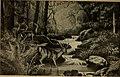 À travers la forêt brésilienne - De l'Amazone aux Andes (1919) (14771033502).jpg