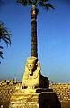 Ägypten 1999 (261) Tempel von Luxor- Sphinxallee (28228647821).jpg