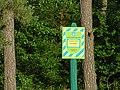 Боромики (заказник), кв. 118–126 Вертіївського лісництва 04.jpg