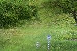 Біосферний DSC 0367 01.jpg
