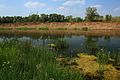Высокий правый берег Урала - panoramio.jpg