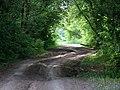 Дорога на Сакмару - Road to Sakmara - panoramio.jpg