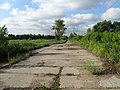Дорога недалеко от берега Москвы-реки, Братеево - panoramio.jpg
