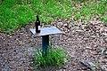 Залізна вода Натюрморт DSC 0236.jpg