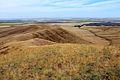 Козьи горы - panoramio (17).jpg