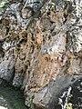 Медовые водопады, Карачаево-Черкессия.jpg
