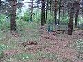 Мемориальное кладбище жертв политических репрессий Макариха. Котлас (04).JPG