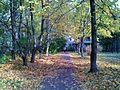 Осень - panoramio (18).jpg