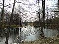 Плотина на реке Усманка - panoramio.jpg