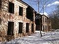 Руины театра Ивановское зимой.jpg