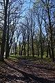Садиба Вітославського-Львова, парк.jpg