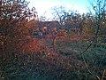 Село Красное утро - panoramio (2).jpg