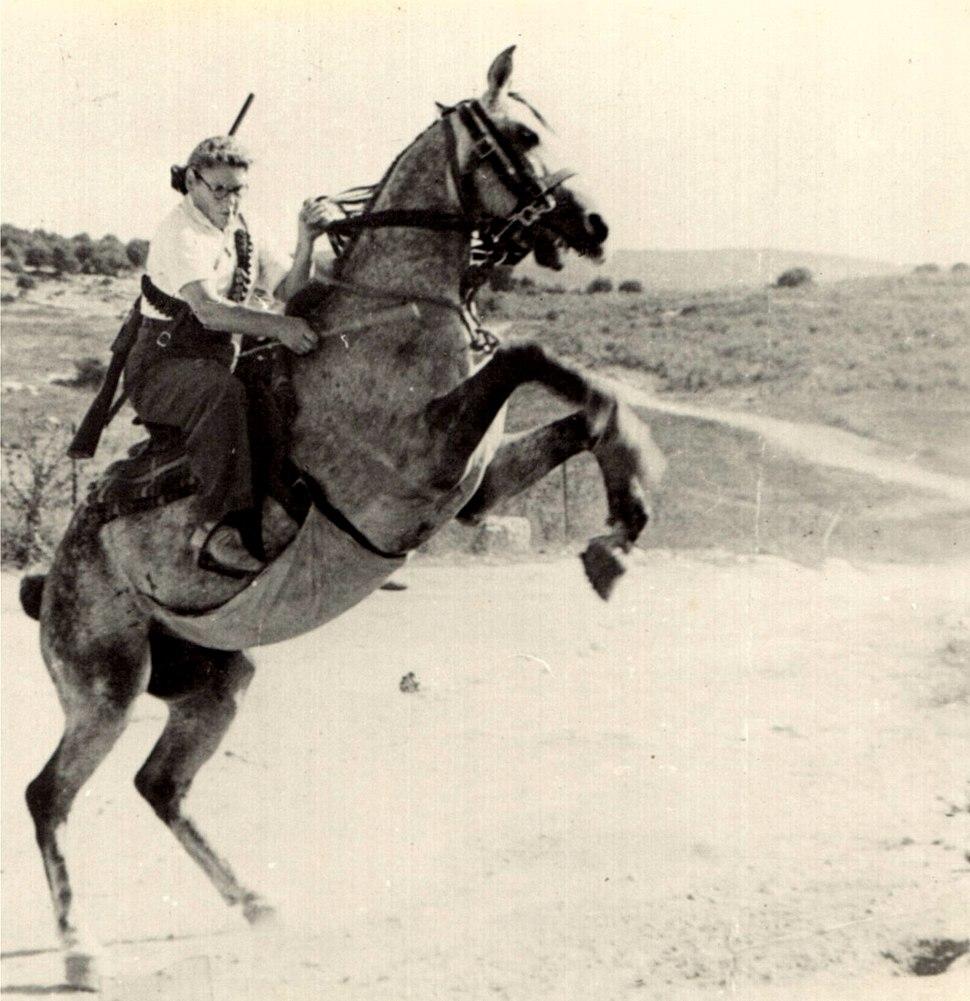 ציפורה זייד על הסוס