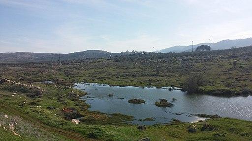 """שילה. חורף תשע""""ה. 2015 - panoramio"""