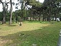 اسطنبول تركيا 2014 - panoramio (20).jpg