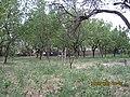 نقاباد، استان آذربایجان شرقی، Iran - panoramio (3).jpg
