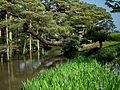 兼六園 Kenrokuen Garden - panoramio.jpg