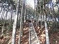 大亀付近の熊野神社 Kumano Shrine, near Ōgame - panoramio (1).jpg