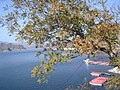 安丙午眼中的易水湖 - panoramio.jpg