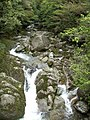屋久島 - panoramio (6).jpg