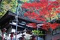 犬鳴山七宝瀧寺 泉佐野市 Shippōryū-ji 2013.11.23 - panoramio.jpg