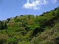 筑波山系丸山 - panoramio.jpg