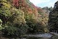 粟又の滝遊歩道 - panoramio (22).jpg
