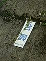 鐵路內灣線合興站標示/Signage of Hexing Sta. on Neiwan Railway - panoramio.jpg