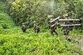 87式対戦車誘導弾(第40戦闘団訓練検閲・第40普通科連隊).jpg