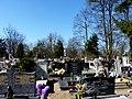 - Cmentarz Nowofarny - panoramio (24).jpg