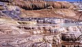 00 0345 Mammoth Hot Springs - Sinterterassen.jpg