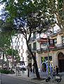 07 L'alzina de Mossèn Cinto, passeig de Gràcia.jpg