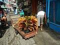 0892Poblacion Baliuag Bulacan 74.jpg