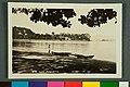 150 Rio Ilha de Paquetá. Photo Postal Colombo (1) - 1-21915-0000-0000, Acervo do Museu Paulista da USP.jpg