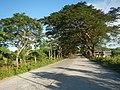 1518Franciso Viola Highway San Rafael Bulacan 06.jpg
