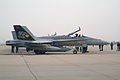 163444 200 VFA-97 Warhawks CAG bird Lemoore NAS Feb-07 (3348884967).jpg