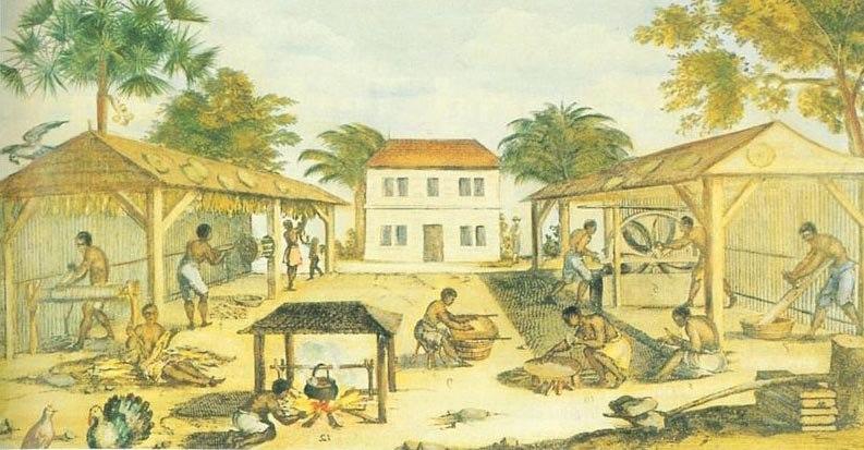 1670 virginia tobacco slaves