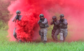 182 Security Forces maneuver through concealment smoke.png