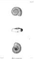 1841 BostonJournal NaturalHistory v3 Nutting1.png