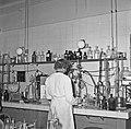1958 visite du Ministre de l'agriculture au CNRZ-11-cliche Jean Joseph Weber.jpg