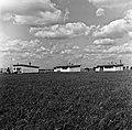 1966 Domaine expérimentale de La Sapinière à Bourges-59-cliche Jean-Joseph Weber.jpg